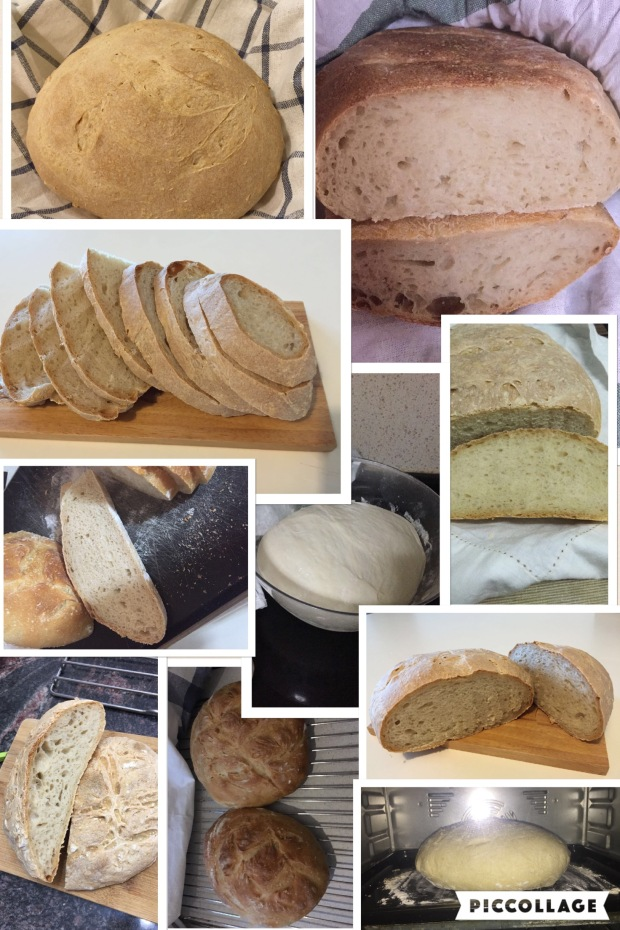 Workshop 4 - First breads