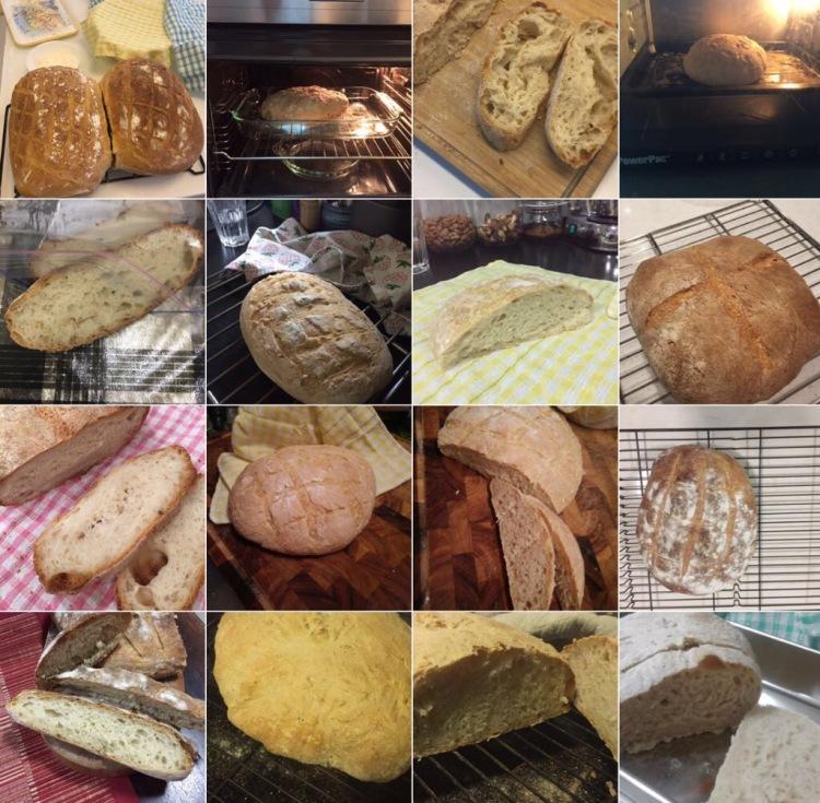 Workshop 6 - First Breads
