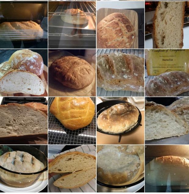 Workshop 7 - First Breads