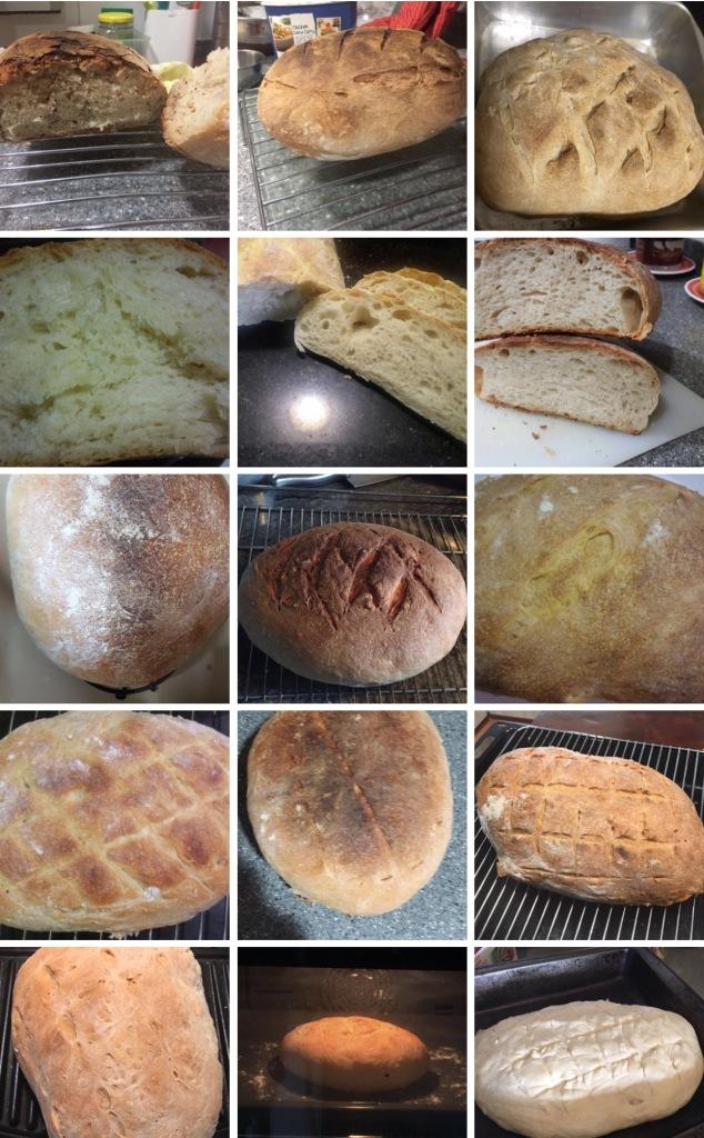 Workshop 8 - First Breads