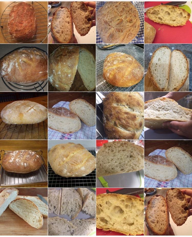 Workshop 9 - First Breads