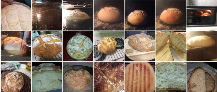 Sourdough WS12 Breads