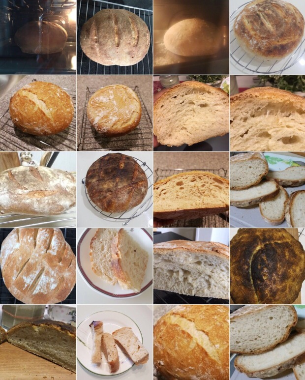 WKSP 11, The breads