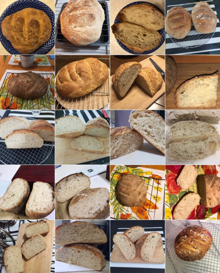 wksp#17 breads
